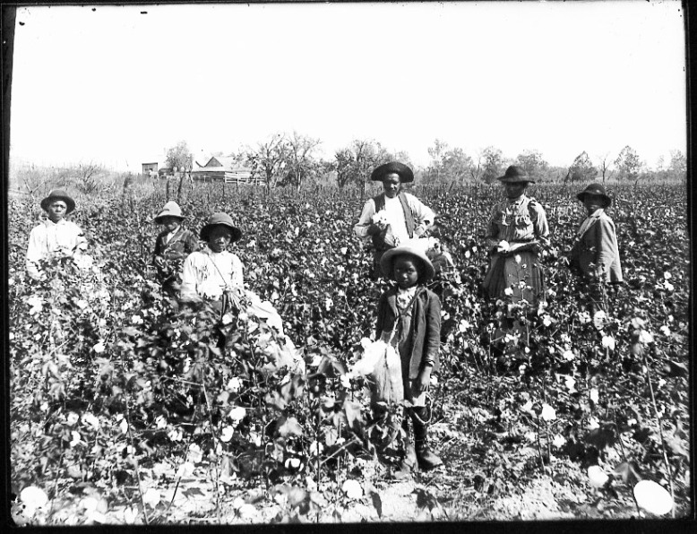 https://upload.wikimedia.org/wikipedia/commons/8/8f/Black_cotton_farming_family.jpg