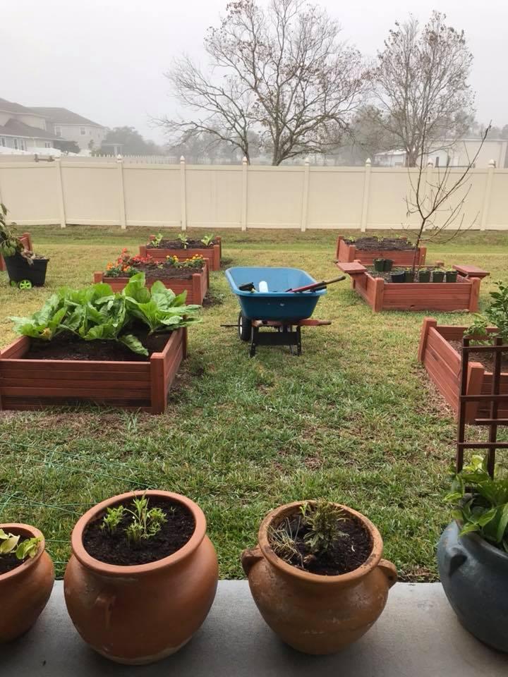 Gardenoir_benny_raisedbeds